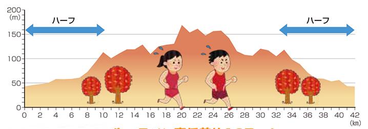 いびがわマラソン 高低差