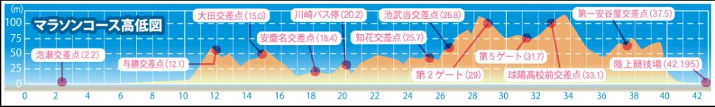 沖縄マラソン 高低差